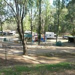 Beechworth Holiday Park의 사진