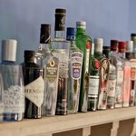 Over 20 Gins in our range