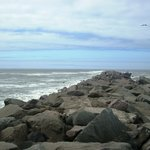 Foto van Ocean Shores Inn & Suites