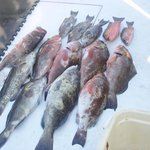 Dos Hombres - John's Pass Fishing Charters - Tours