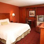  King Standard Guest Room