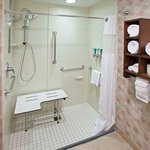 ADA Guest Bath - Roll-In Shower