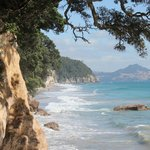 Hike from Cathedral Cove B & B