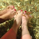                                                        fish foot spa