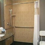 Roll-in Shower King Room