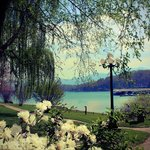 Ridges Resort & Marina