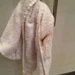Soiled towel, not changed by maid service