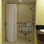  Roll-in Accessible Shower