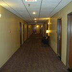 Φωτογραφία: BEST WESTERN PLUS St. Charles Inn