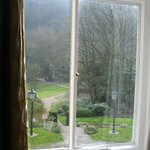                    view of the grounds from our window