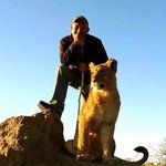 me and lion in Zimbabwe