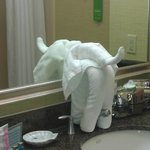What's with the towel elephant?