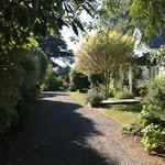 Bilde fra Marlborough Bed & Breakfast