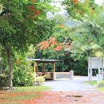 Photo of Lake Placid Tourist Park Cairns