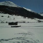 Alpenlodge Livigno Apartments照片