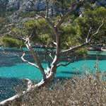  Calanque Sormiou