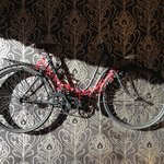                   Bradley&#39;s old bike in the dining room