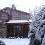 Winters at Treetops cottage