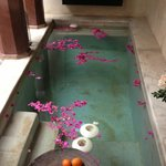 The pool with Bougainvillea petals scattered