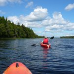                                     Kayak rental to paddle local lake.