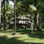 Macapuno Beach Resort