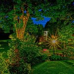 Night Garden View