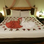 I loved those Ducks on the bed with red flowers around we found when arriving