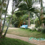 Photo of Royal Palm Resort Kalpetta