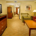 Photo de Hilton Garden Inn Atlanta NW / Kennesaw Town Center