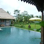                    The pool amidst paddy field