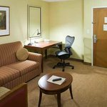 Φωτογραφία: Hilton Garden Inn Dallas/Allen
