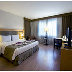 Hotel Mercure Jardins