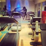  Gym @ Hotel Indigo, Chelsea