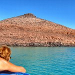 Isla Espiritu Santo, you cannot miss it!!