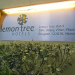 Photo de Lemon Tree Hotel, Udyog Vihar, Gurgaon