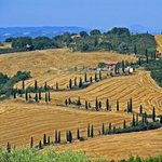 Val d'Orcia countryside