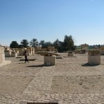                    Temple of Merenptah - view