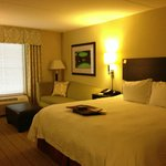 Φωτογραφία: Hampton Inn & Suites Gainesville-Downtown