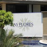                    Las Flores