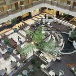 Embassy Suites Orlando Downtown Foto