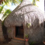 Palapa accommodation - Baja Outpost