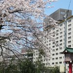Suginoi Hotel