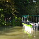 Gamboa Rainforest Resort Guided Fishing Tour