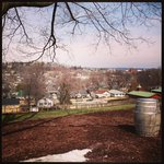 View of Hermann, MO from Stone Hill Winery