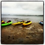                    Got out of the kayaks to explore Assateague for a little while
