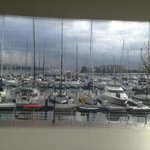 day time marina view from room