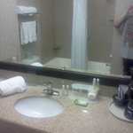Foto di Holiday Inn Express Hotel & Suites Roseville-Galleria Area