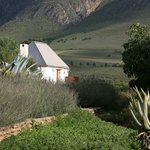 Swartberg Country Manor Foto