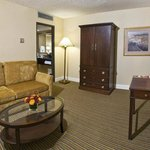 Executive Suite Living Room Area