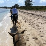 Horseback riding in Grand Cayman